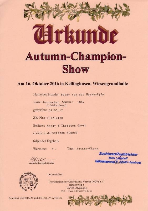 urkunde-autumn-chapion-show-becky-2016-10-16