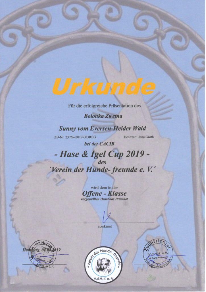 Urkunde Hase & Igel Cup 2019 Sunny