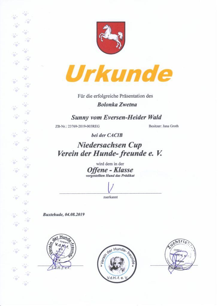 Urkunde Niedersachsen Cup 2019 Sunny
