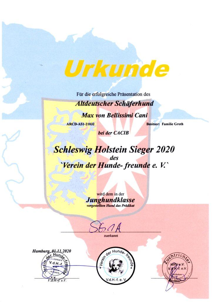 Nanuk - SH Sieger 2020-11-01