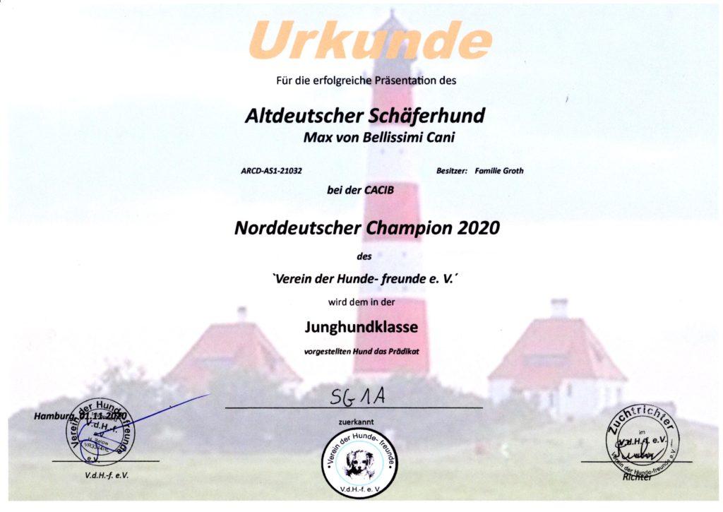 Nanuk - Urkunde Norddeutscher Champion 2020-11-01