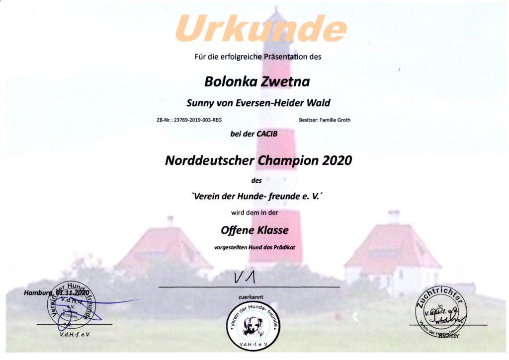 Sunny - Urkunde Norddeutscher Champion 2020-11-01